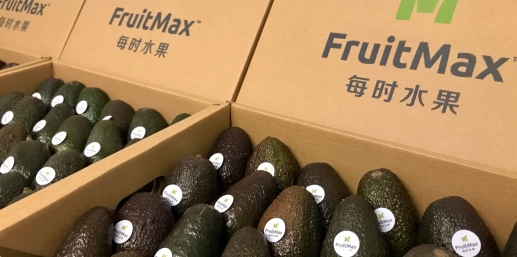 The rise of avocado in China